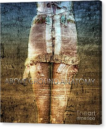 Above Ground Anatomy  Canvas Print by Steven Digman