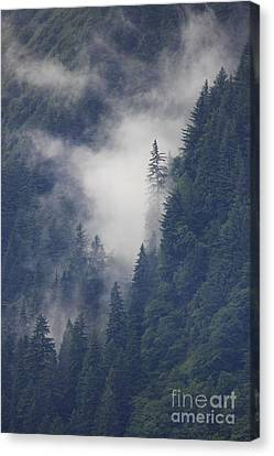 Above Juneau Canvas Print