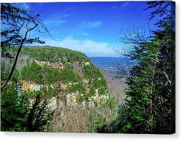 Above The Canyon Canvas Print