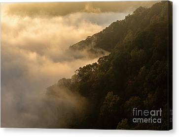 Canvas Print featuring the photograph Above The Mist - D009960 by Daniel Dempster