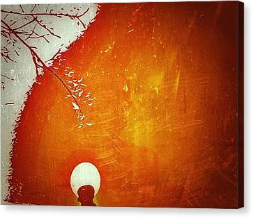 Above The Street Light Canvas Print