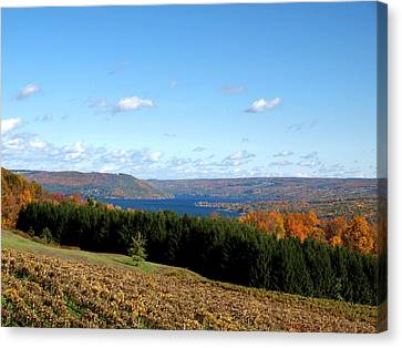 Keuka Canvas Print - Above The Vines by Joshua House