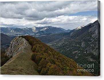 Alberi Canvas Print - Abruzzo National Park From The Top Of The Mountain by Luigi Morbidelli