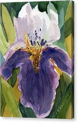 Absract Iris Canvas Print