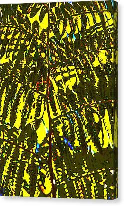 Abstract - Dappled Light Canvas Print