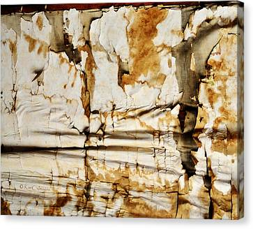 Canvas Print featuring the photograph Abstract 1317 Old Wallpaper As Landscape by Kae Cheatham
