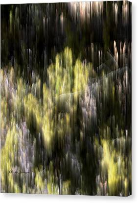Canvas Print featuring the photograph Abstract 3317 In The Forest by Kae Cheatham