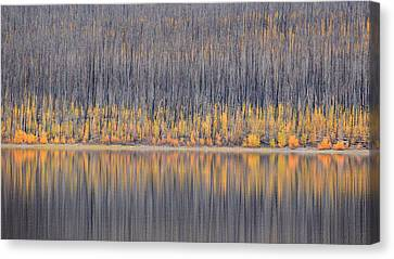 Canvas Print featuring the photograph Abstract Autumn by Al Swasey