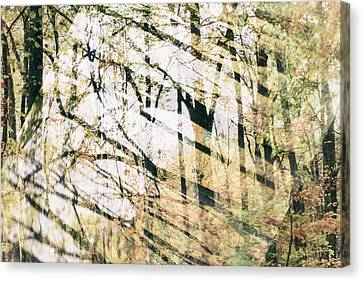 Abstract Autumn Woods Canvas Print by Mother Nature
