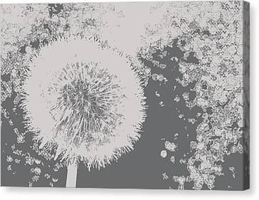 Abstract Black And White Dandelion Photo Art Canvas Print