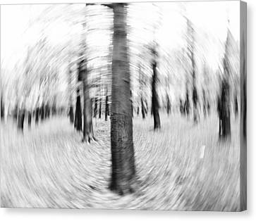 Abstract Black And White Nature Landscape Art Work Photograph Canvas Print by Artecco Fine Art Photography