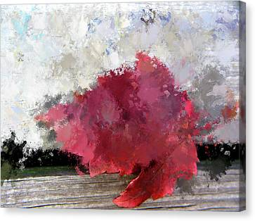 Painted Details Canvas Print - Abstract Bright Red Leaf by Terry Davis