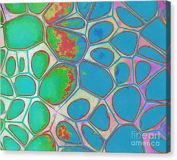 Geometric Artwork Canvas Print - Abstract Cells 4 by Edward Fielding