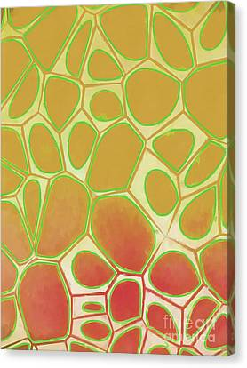 Geometric Artwork Canvas Print - Abstract Cells 2 by Edward Fielding