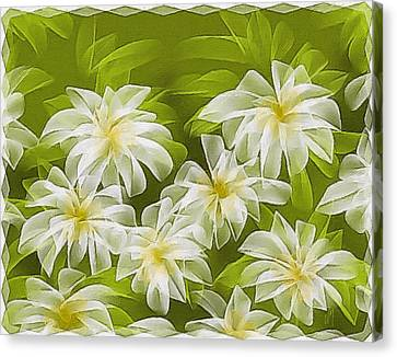 Abstract Daisies Canvas Print by Veronica Minozzi