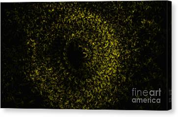 Abstract Floral Swirl No.1 Canvas Print