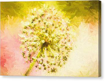 Impressionist Canvas Print - Abstract Flower by Pati Photography