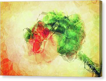 Abstract Flower V Canvas Print by Angela Doelling AD DESIGN Photo and PhotoArt
