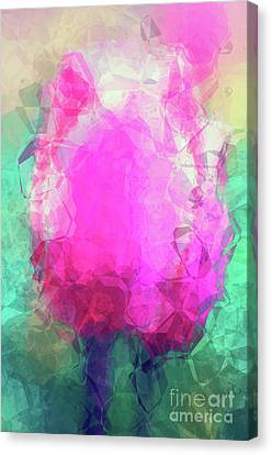 Abstract Flower Vi Canvas Print