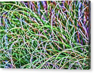 Abstract Grass Canvas Print