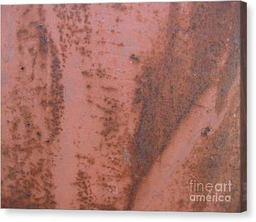 Abstract In Rust Canvas Print by Karen Sydney