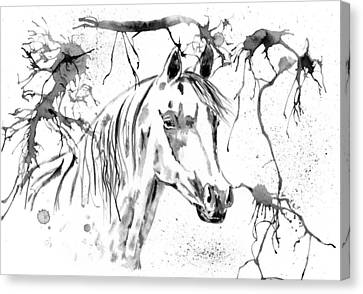 Abstract Ink - Black And White Arabian Horse Canvas Print by Michelle Wrighton