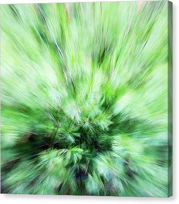 Canvas Print featuring the photograph Abstract Leaves 7 by Rebecca Cozart