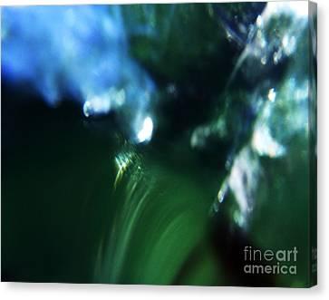 Abstract No.14 Canvas Print by Mic DBernardo