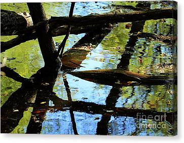 Abstract Of St Croix River 03 Canvas Print