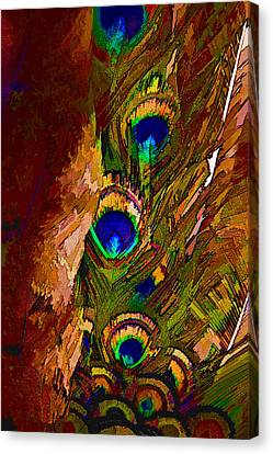 Abstract Peacock Canvas Print by Ches Black