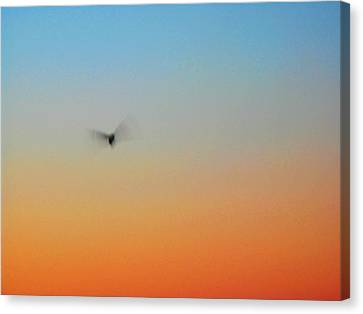 Abstract Skyscape Canvas Print by Juergen Roth