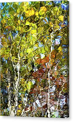 Abstract Tree Reflection Canvas Print by Christina Rollo