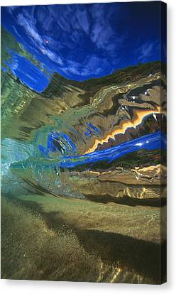 Abstract Underwater View Canvas Print by Vince Cavataio - Printscapes