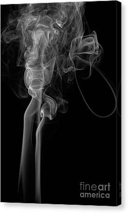Abstract Vertical Monochrome White Mood Colored Smoke Wall Art 02 Canvas Print by Alexandra K