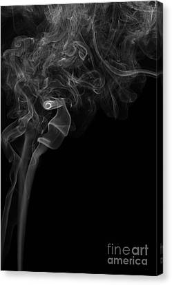 Abstract Vertical Monochrome White Mood Colored Smoke Wall Art 05 Canvas Print by Alexandra K