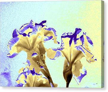 Abstract Watercolor Irises  Canvas Print by Will Borden