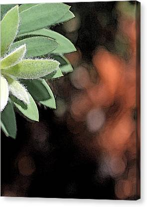 Canvas Print featuring the photograph Abstract Watercolor by Judy Vincent
