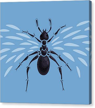Abstract Winged Ant Canvas Print by Boriana Giormova