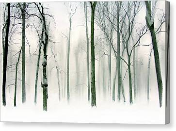 Abstract Winter Canvas Print by Jessica Jenney