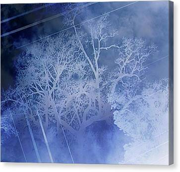 Abstract With Creepy Tree- Ghost Story Canvas Print by Kristin Sharpe