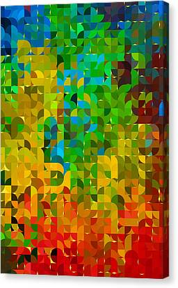 Abstracting Illusions Canvas Print