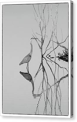 Canvas Print featuring the photograph Abstracts On The Lake by Carolyn Dalessandro