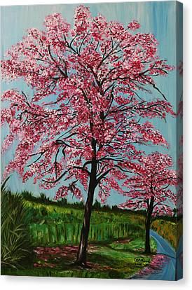 Abundance Canvas Print by Anupama Arora Mallik