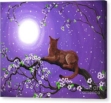 Abyssinian In Amethyst Moonlight Canvas Print by Laura Iverson