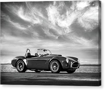Ac Shelby Cobra Canvas Print by Mark Rogan