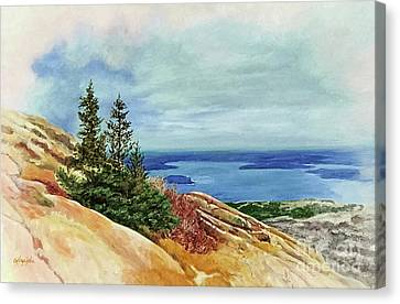 Acadia Park In The Fall Canvas Print