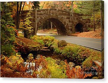 Canvas Print featuring the photograph Acadia Stone Bridge by Alana Ranney