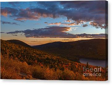 Acadia Sunset Canvas Print