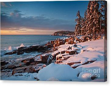 Acadian Winter Canvas Print by Susan Cole Kelly