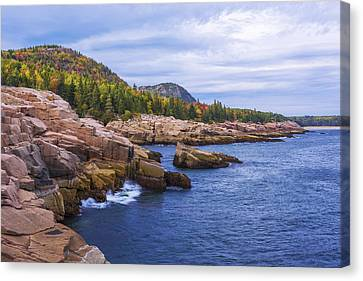 Canvas Print featuring the photograph Acadia's Coast by Chad Dutson